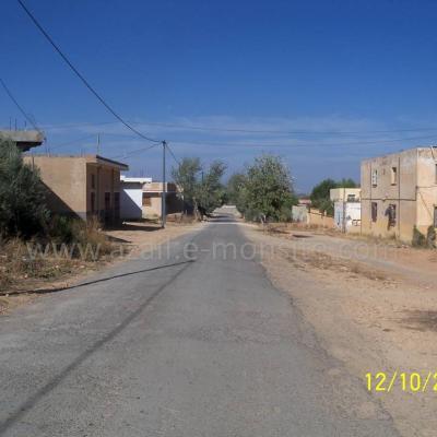Almamlouh (2)