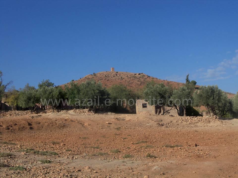 Labkhalda (8)