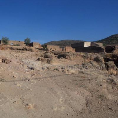 Tafessera (11)