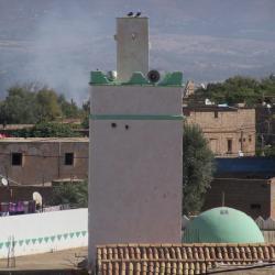 Mosquée d'Azail